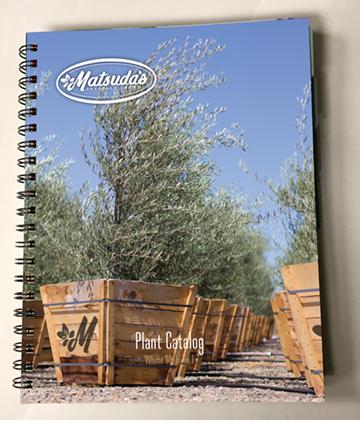Matsuda's Nursery 2018 Plant Catalog